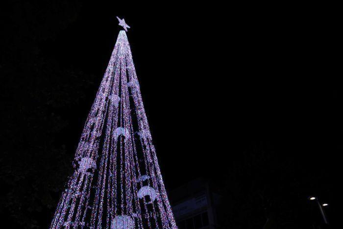 Рекорд за Гинис: Австралија постави светски рекорд во бројот на лампички на новогодишна елка