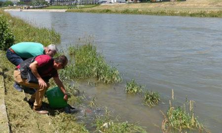 Град Скопје ги пориби водите на Вардар